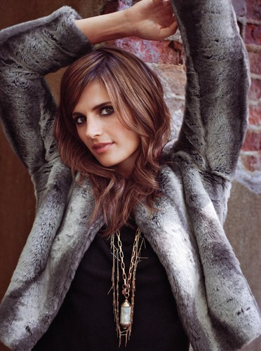 stana katic wallpaper called Stana Katic