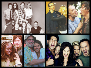 TWD collage