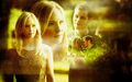 Klaus and Caroline - the-vampire-diaries-tv-show wallpaper