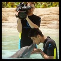 Siva kissing Dolphin - the-wanted photo