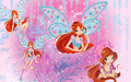 Bloom Wallpaper - the-winx-club wallpaper