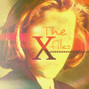 The X-Files ছবি called Dana Scully