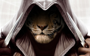assassins tiger