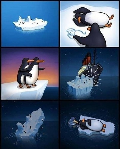Titanic wallpaper called Ever think about the penguins?