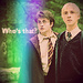 Harry Potter - tom-felton icon