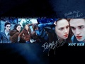 Twilight Fan-Made Banner - twilight-series fan art