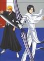 Uryu Ishida and Ichigo Kurosaki