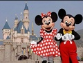 Minnie and Mickey - walt-disney-world photo