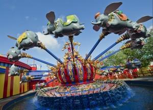 Dumbo rides