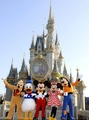 Castle of disney - walt-disney-world photo