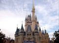 Disney dreams do come true - walt-disney-world photo