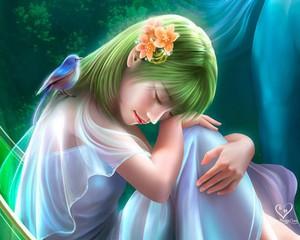 Melody the beautiful Lotus