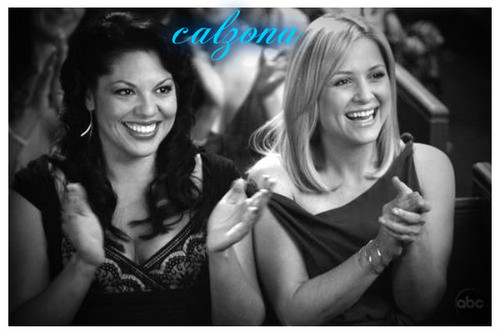 Grey's Anatomy Couples karatasi la kupamba ukuta with a portrait entitled calzona