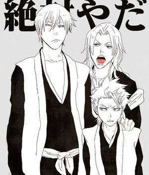 ginebra and Toshiro and Rangiku