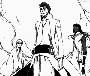 gin Ichimaru and Aizen and Kaname