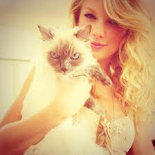 taylor veloce, swift and her cat!
