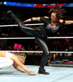 Main Event Digitals 1/29/14 - aj-lee photo