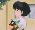 らんま1/2 Akane and P-chan