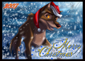 A Balto Christmas - balto photo