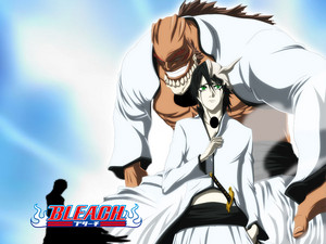 Ulquiorra Schiffer and Yammy