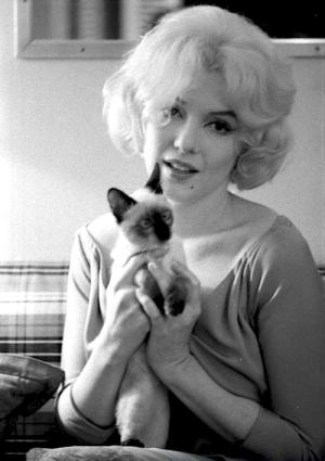 Marilyn Monroe Holding A Kitten