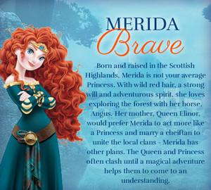 Merida: Brave