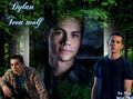 Dylan - the-vampire-diaries fan art