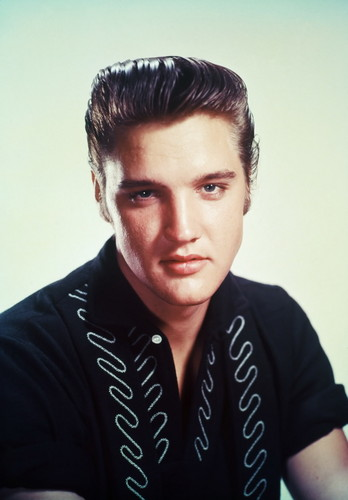 elvis presley fondo de pantalla probably with a portrait entitled Elvis Presley
