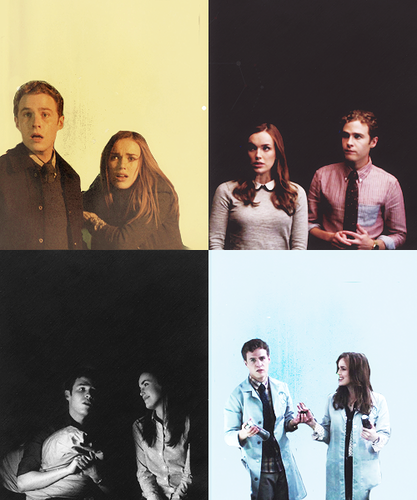 FitzSimmons wallpaper possibly with a concerto and a sign entitled 【Fitzsimmons】