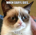 Grumpy cat!!!!!!! - meme fan art