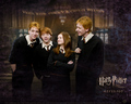 Harry Potter<3 - harry-and-hermione photo
