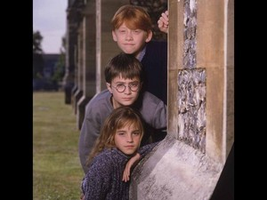 Harry,Hermy and Ron