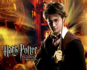 Harry Potter<33