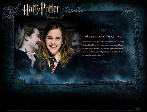 Harry and Hermione wallpaper probably containing a sign and anime entitled Hermione<33