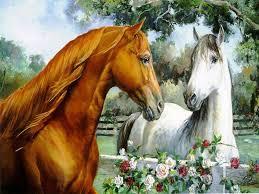 horse tình yêu