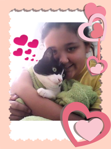 जे सी केलेन वॉलपेपर containing a kitten, a tom, and a cat entitled baby and me
