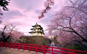 hirosaki_castle_japan
