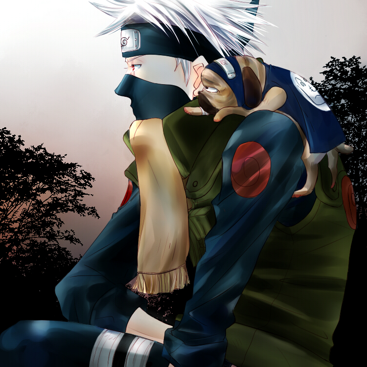 Kakashi Hatake and Pakkun
