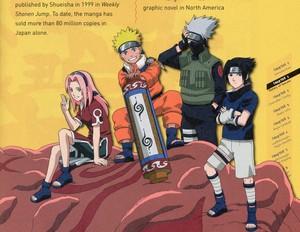 Kakashi Hatake, Sakura, Naruto and Sasuke