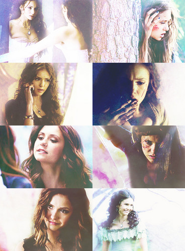 katherine pierce wallpaper titled Katherine Pierce