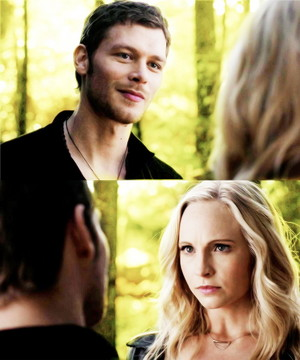 Everything is Klaroline and nothing hurts