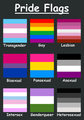 Pride Flags - lgbt photo