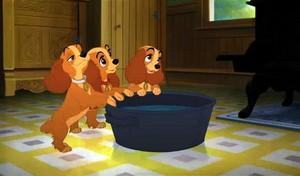 Bath time!!!!