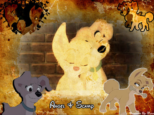 Lady and the Tramp II wallpaper probably with a sign called malaikat and Scamp