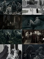 LOTR fan art - lord-of-the-rings fan art