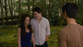 Edward, Bella and Jake