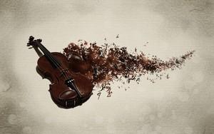 Violin fondo de pantalla