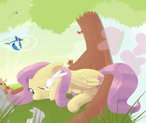 Fluttershy Nature