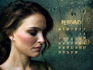 NP.COM Calendar - February
