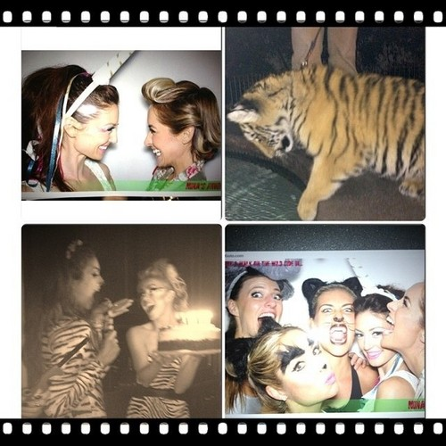 Nina Dobrev wallpaper possibly with a tiger cub titled Nina's 25th Birthday Party